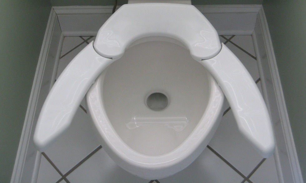 adjustable toilet seat