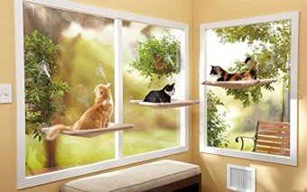 Sunny Seat Cat Window Bed Keeps Your Pet Comfortable