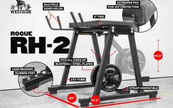 RH-2 Rogue Reverse Hyper for Back Therapy