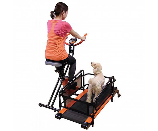 doggy-health-run-treadmill-for-pet-owners
